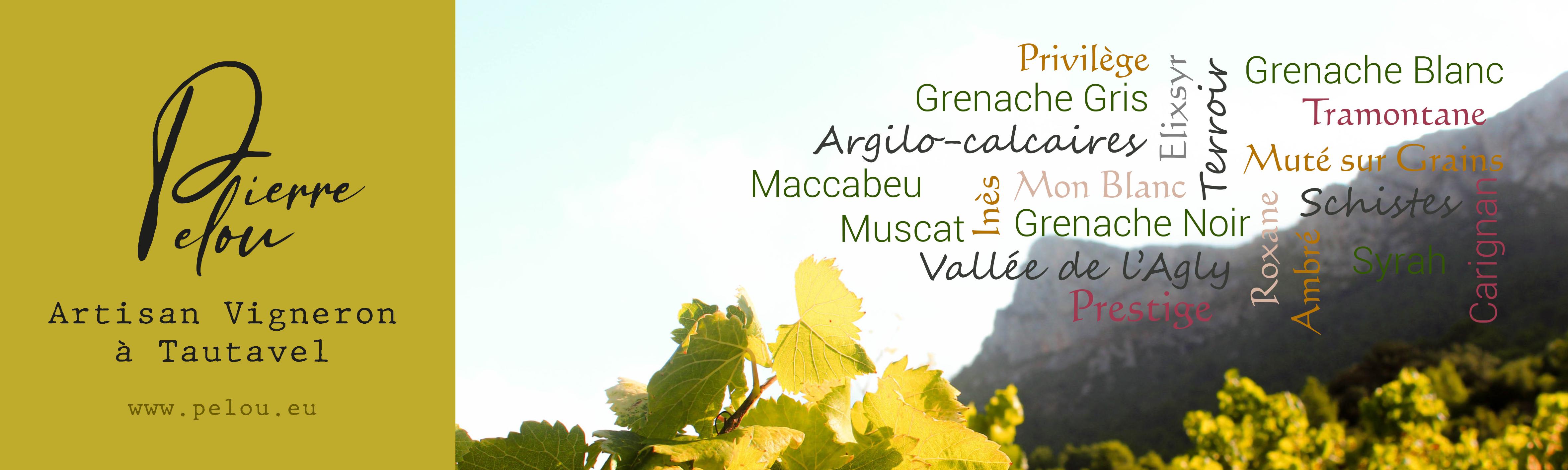Domaine Pierre PELOU Boutique en ligne vins de Tautavel Vigneron indépendant culture Biologique